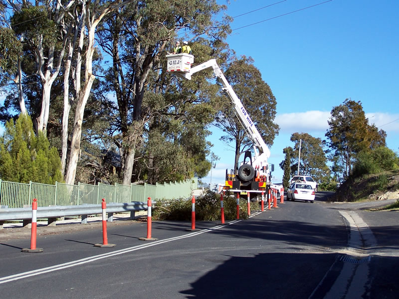 traffic control and tree trimming